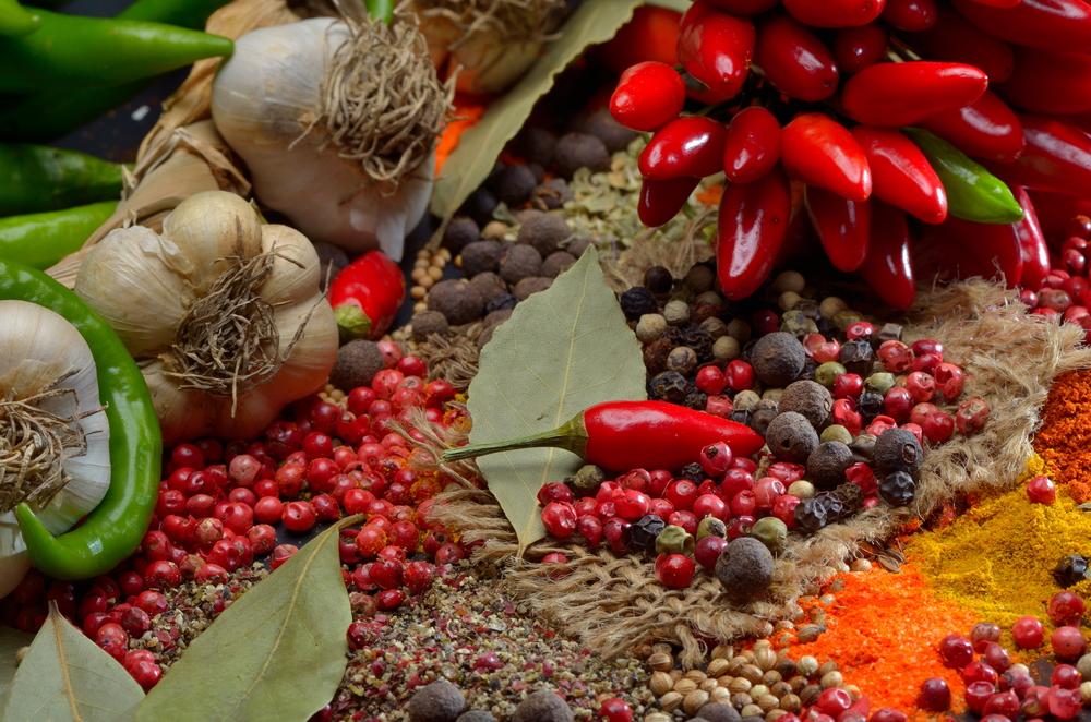 comida mexicana patrimonio Luis Lozano 11