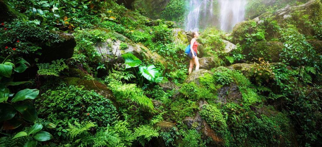 ¿Qué es el ecoturismo y cuáles son sus características?